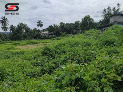 Commercial plot or land for sale Palakkad Real Estate Property