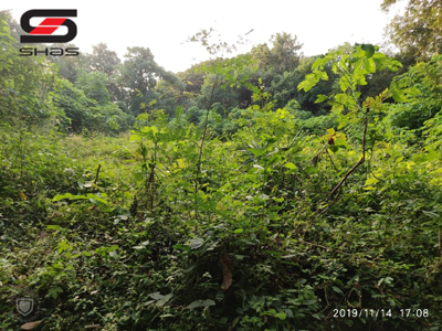 House plot, Parambu for sale in Palakkad, Kerala Shas Properties