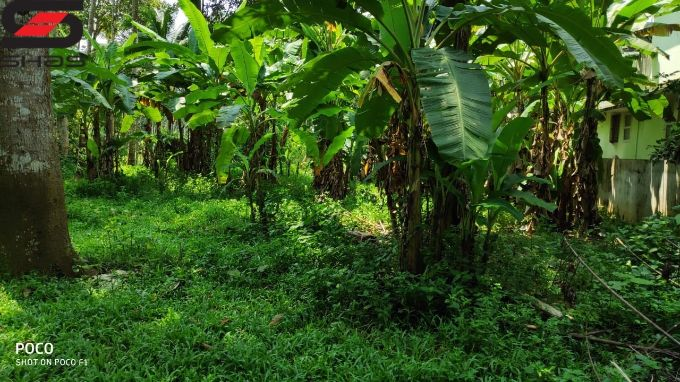 29 cent land for sale in Pariyaram, Thrissur Real estate agents