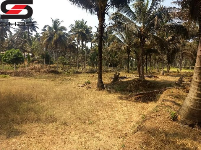 Farmland with small house for sale Palakkad Property, Shasonline