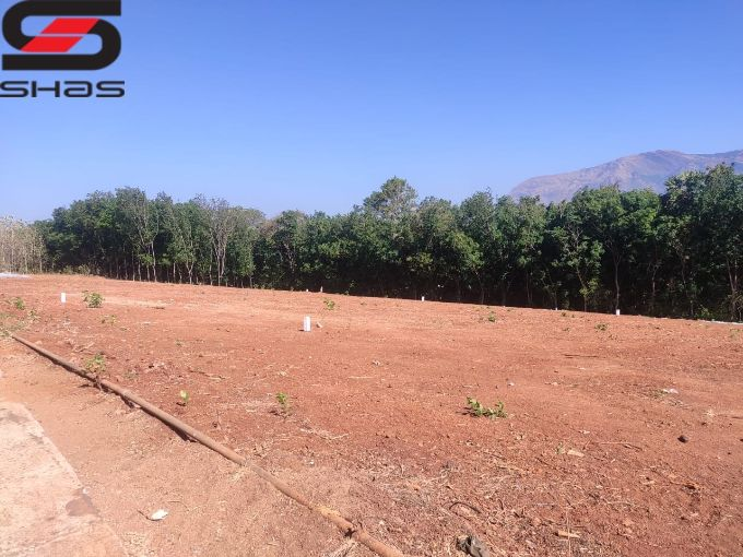 Parambu or plot for sale in Mundur, Palakkad Real Estate Properties