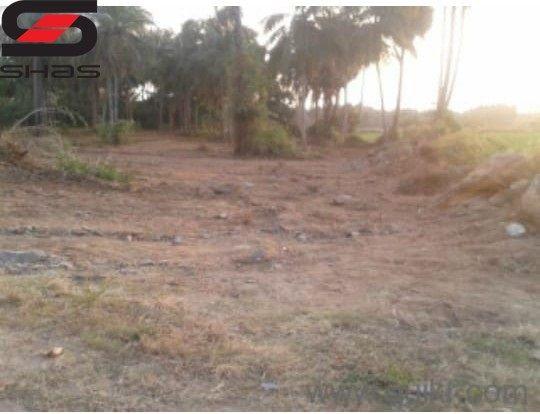 2 acre farmland for sale, Palakkad, Shas Properties Realtors