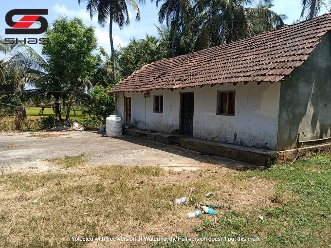 Farmland for sale in Chittur, Nallepilly, Palakkad, Kerala Properties
