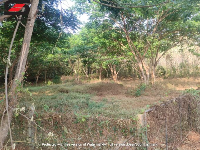 Commercial land for sale, Palakkad, Kerala Real Estate Properties