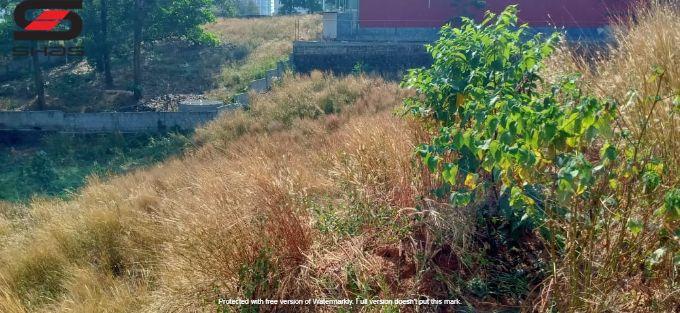 Land for lease in Kakkanad, Ernakulam Properties, Shasonline