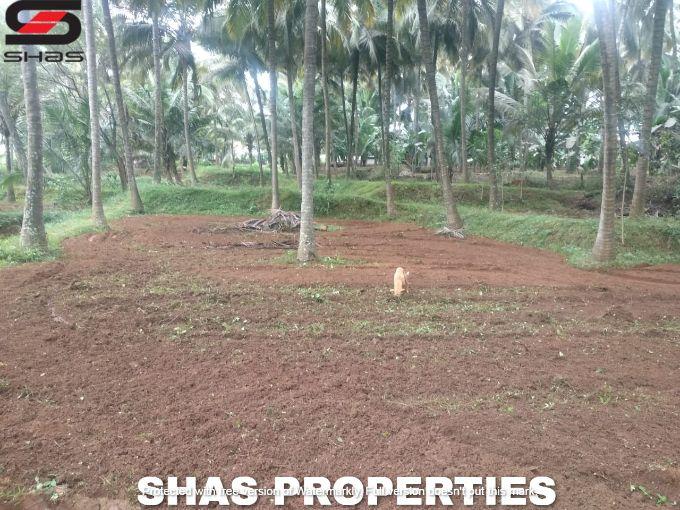 Farmland in Kozhinjampara, Palakkad for sale, Real Estate