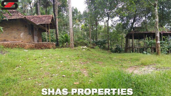 Farmland for sale near Meenangadi, Wayanad Properties, Realtors