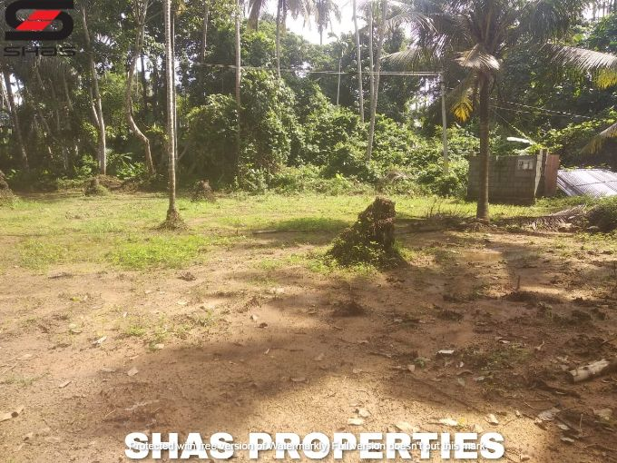 House plots for sale in Chevoor, Thrissur Real Estate Properties
