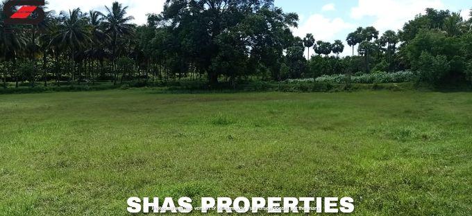Plain land & house for sale in Kozhinjampara, Palakkad Realtors